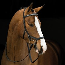 Rambo® Micklem® Diamante Competition Bridle