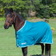 Shires Tempest Original 600D Turnout Blanket - Pony