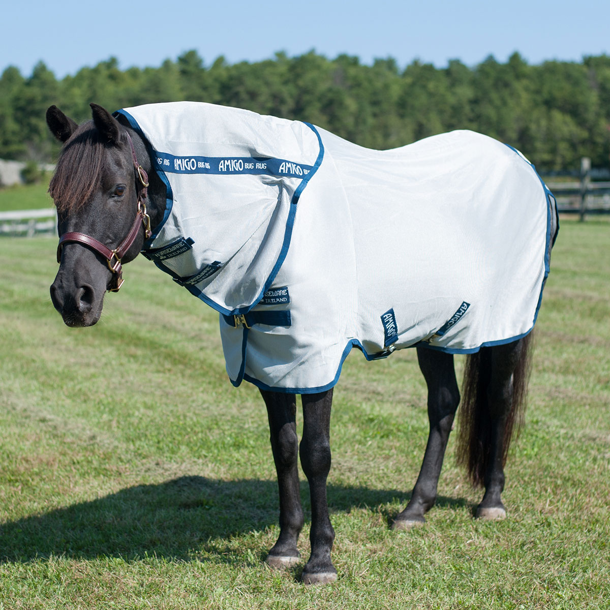 Amigo Pony Bug Rug Fly Sheet