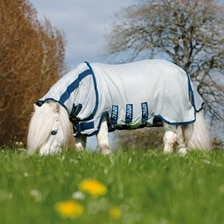 Amigo Petite Bug Blanket