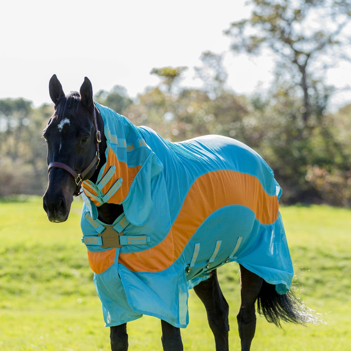 Horseware Amigo Three-In-One Fly Sheet CLOSEOUT