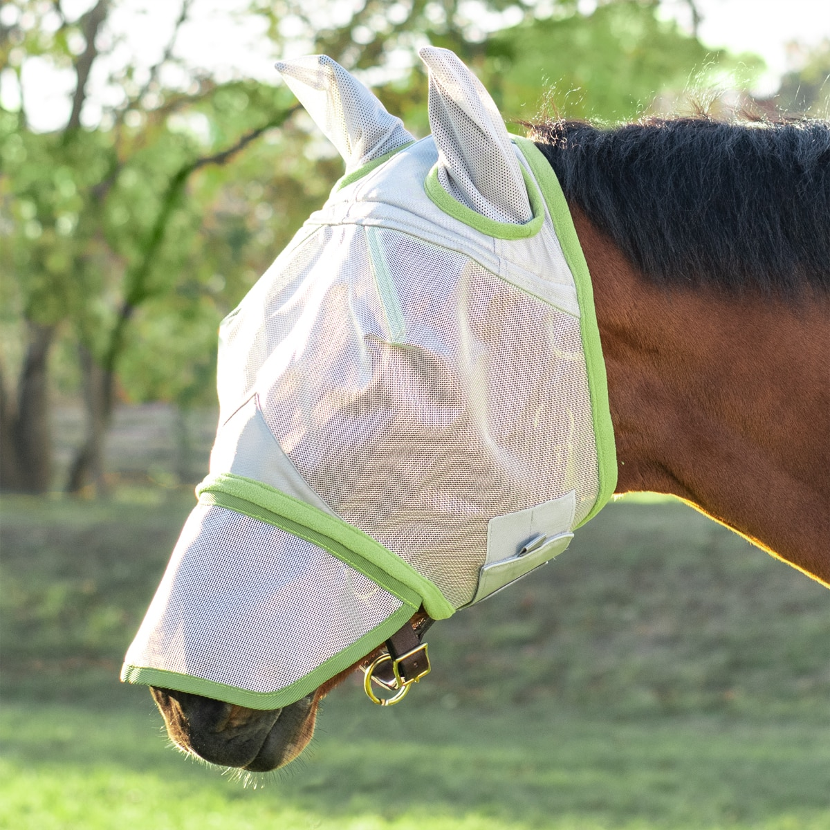 QHP Fly Mask with Detachable Nose flap Size MINI SH