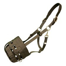 Best Friend Grazing Muzzle with Padded Leather Crown