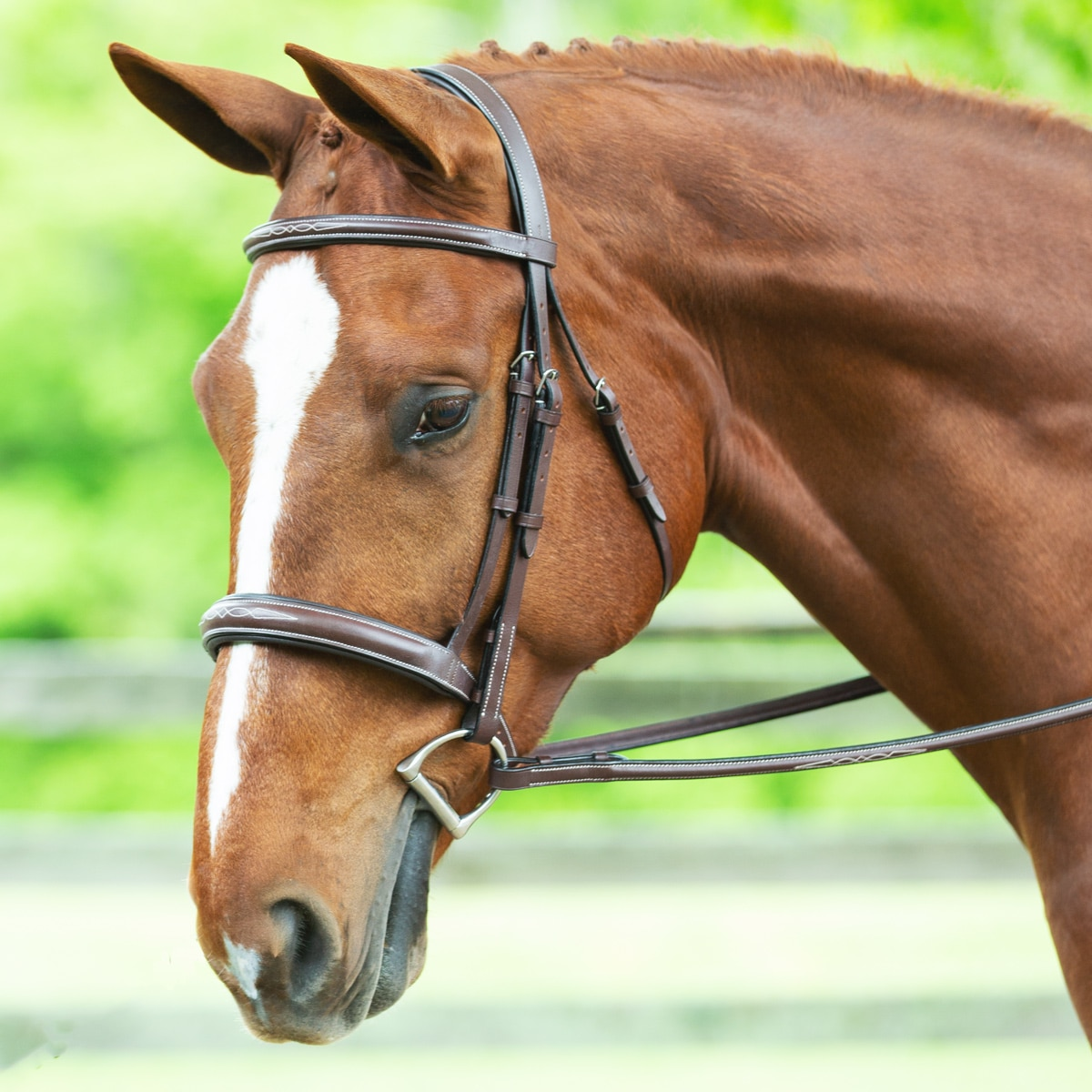 Harwich® Wide Noseband Bridle by SmartPak