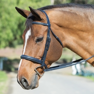 Harwich® Navy Wide Noseband Bridle by Smartpak