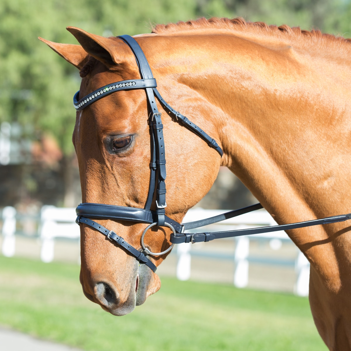 Harwich®: Navy Clear Crystal Dressage Bridle by SmartPak