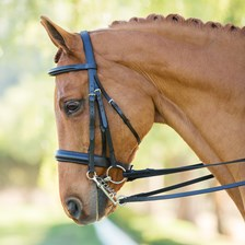 Harwich® Double Bridle by SmartPak