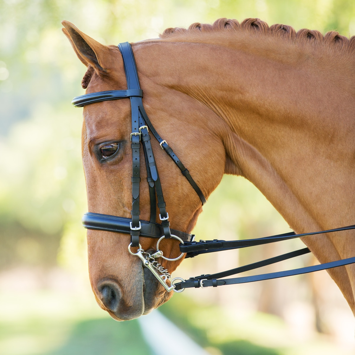 Harwich®: Double Bridle by SmartPak