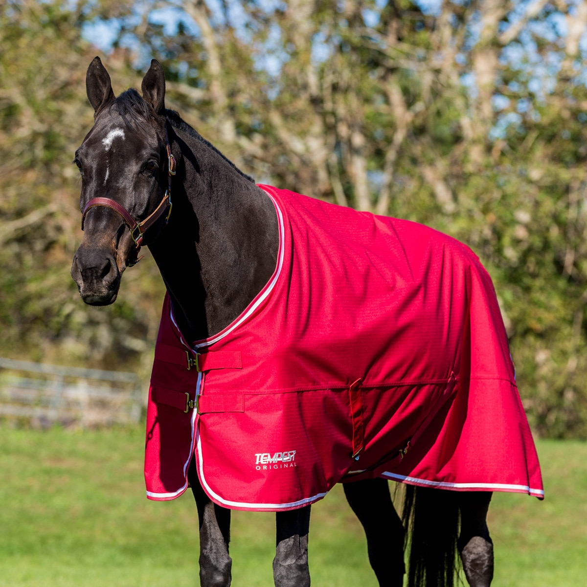 Shires Tempest Lite Lightweight No Fill Fixed Neck Combo Rain Sheet Turnout Rug