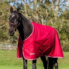Shires Tempest Original Air Motion Turnout Sheet