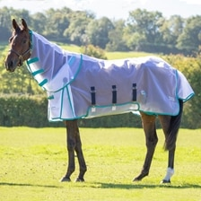 Shires Fine Mesh Fly Sheet & Neck Set