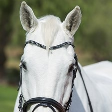 Kavalkade Sparkle Browband- Grey
