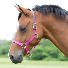 SmartPak Breakaway Pony/Mini Halter