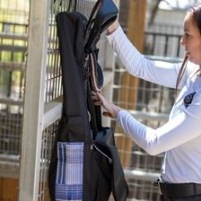 Kensington All Around Collection Deluxe Halter/Bridle Bag Made Exclusively For SmartPak