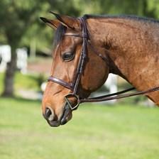 Ovation Elite Fancy Stitched Wide Noseband Bridle