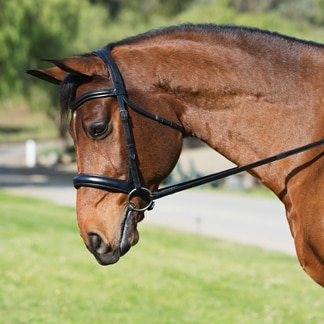 Camelot Gold RCS Snaffle Dressage Bridle with Crank Noseband