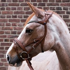 Stubben Freedom Bridle with Magic Tack Browband