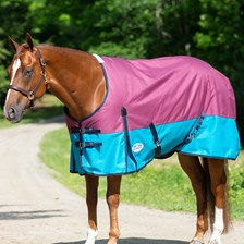 Weatherbeeta ComFiTec Essential Turnout Blanket - Clearance!