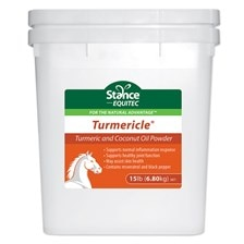 Turmericle® Powder
