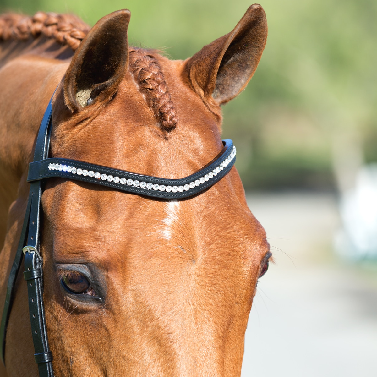 Harwich Curved Crystal Browband By SmartPak-Clear