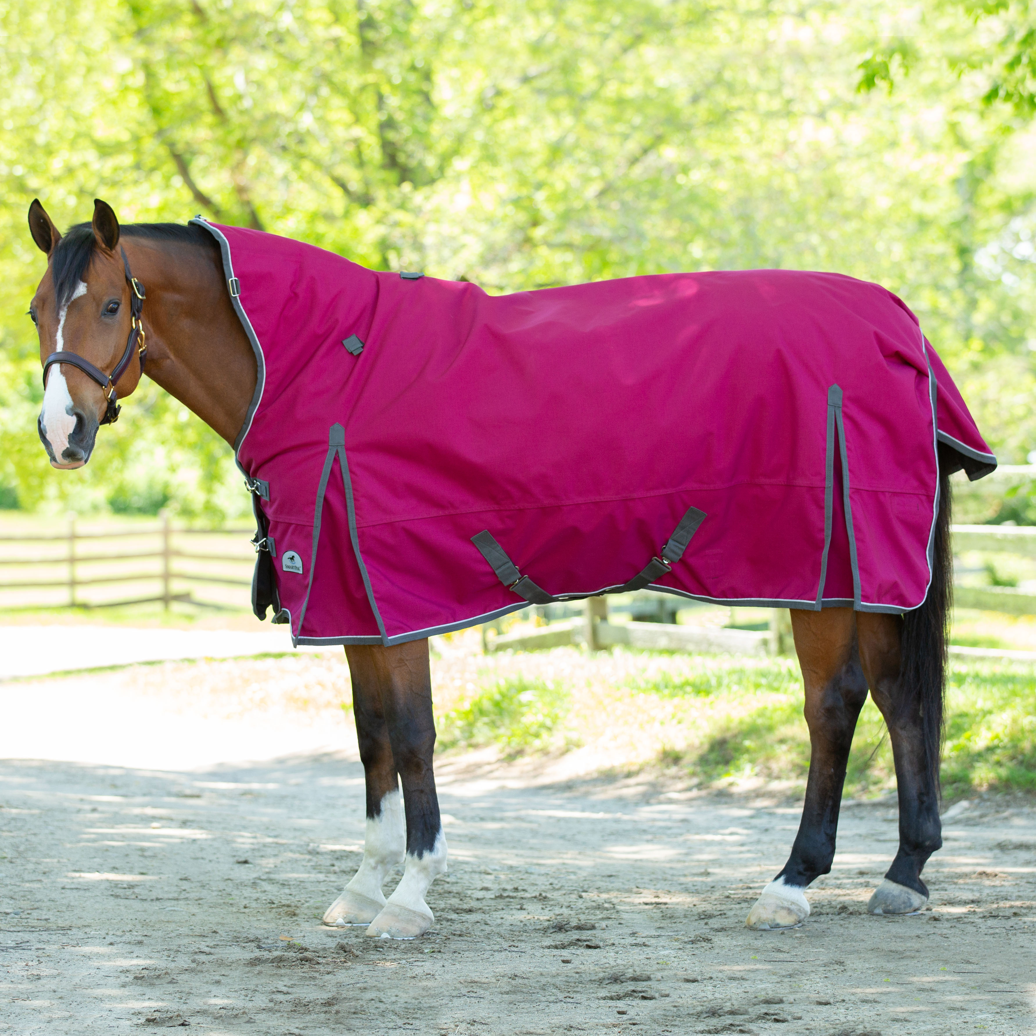Raspberry One Size Fleece Neck Warmer Fleece Neck Warmer Shires