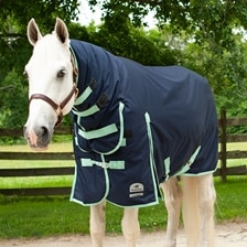 SmartPak Classic Combo Neck Turnout Blanket