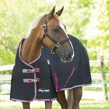 Shires Highlander Turnout Blanket