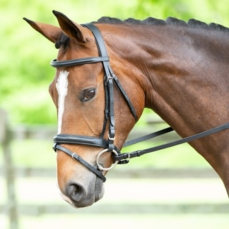 Harwich® Dressage Bridle With Crank by SmartPak