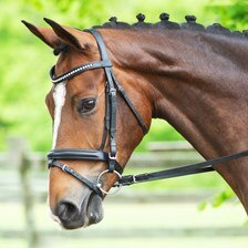 Harwich® Clear Crystal Bridle By SmartPak