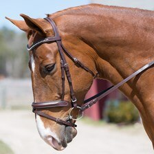 Harwich® Walnut Clear Crystal Bridle by SmartPak