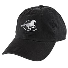 SmartPak Classic Twill Cap