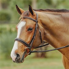 Wellfleet® Contoured Hunter Bridle by SmartPak