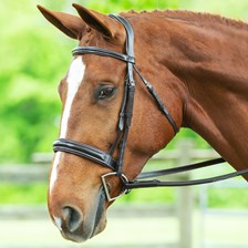 Wellfleet® Contoured Hunter Bridle