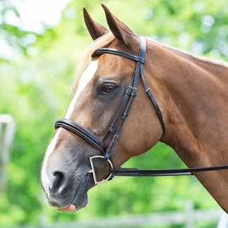 Plymouth® Wide Noseband Hunter Bridle