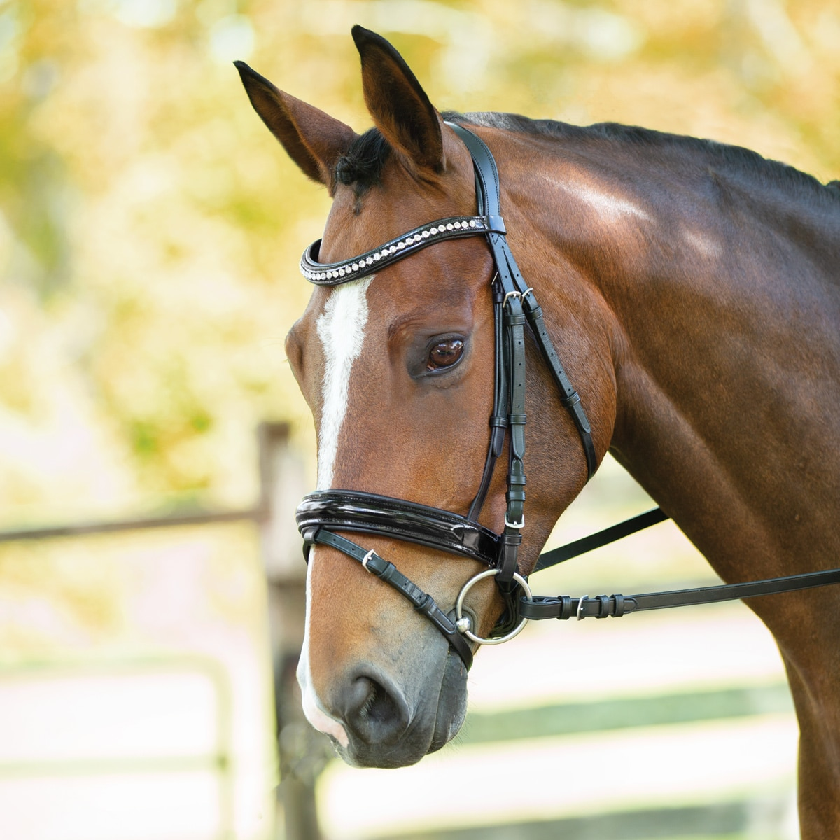 Wellfleet® Contoured Patent Leather Dressage Bridle by SmartPak