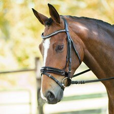 Wellfleet® Contoured Patent Bridle with Crystals by SmartPak