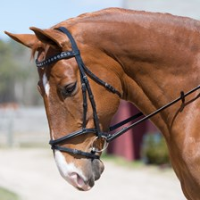 Plymouth® Flowered Stone Dressage Bridle by SmartPak