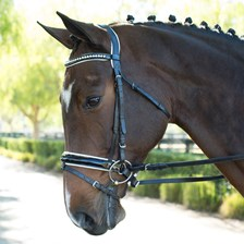 Wellfleet® Contoured Patent Bridle w/White Padding by SmartPak