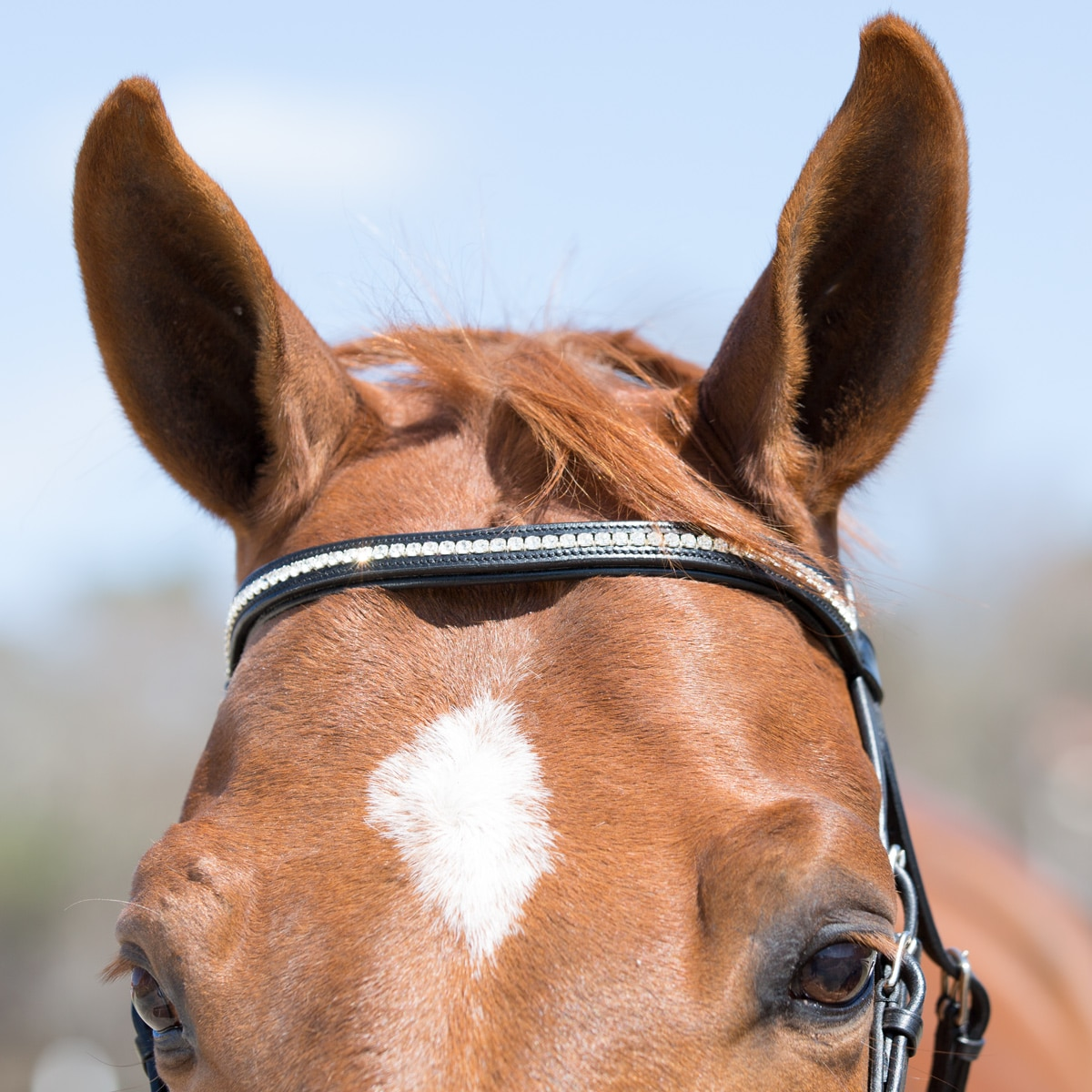 Plymouth® Bling Browband