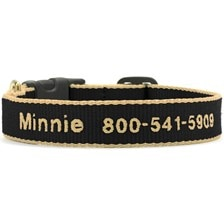 UpCountry® Green Market Personalized Dog Collar