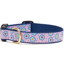 UpCountry® Flower Field Dog Collar