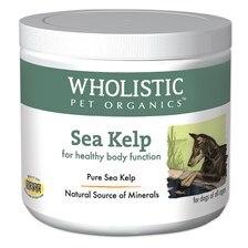 Wholistic Sea Kelp™