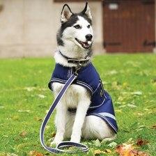 Amigo® Waterproof Dog Blanket