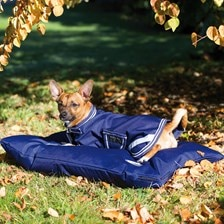 Amigo® Dog Bed