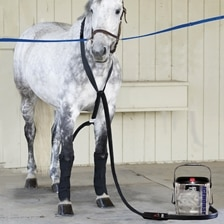 Ice Horse Continuous Cooling System - Practitioner