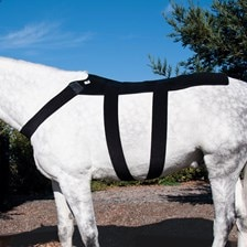 Ice Horse Back Blanket Wrap