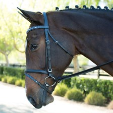 Harwich® Curved Crystal Browband by SmartPak-Saphhire