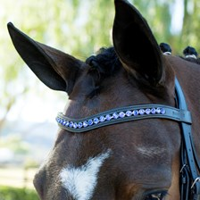 Harwich® Curved Crystal Browband by SmartPak-Sapphire