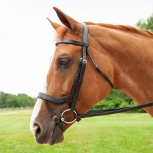 Harwich® Ergonomic Bridle by SmartPak