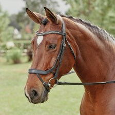 Harwich® Ergonomic Crystal Dressage Bridle by SmartPak